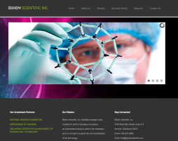 Website Design - Bijhem Scientific
